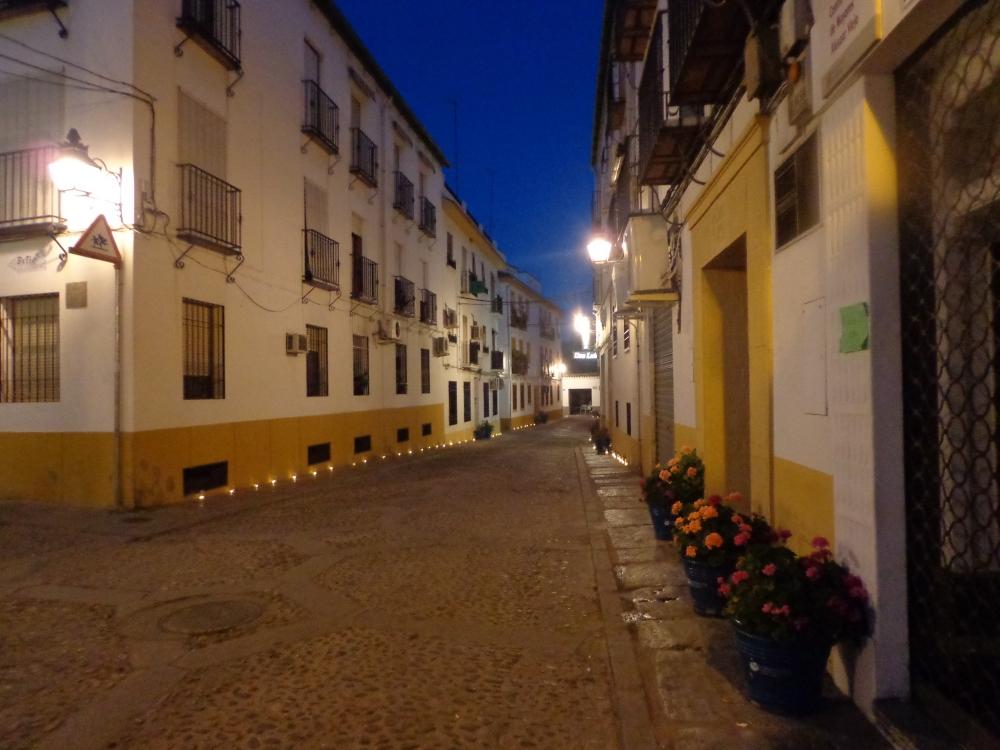 La Noche Blanca del Flamenco (4/6)